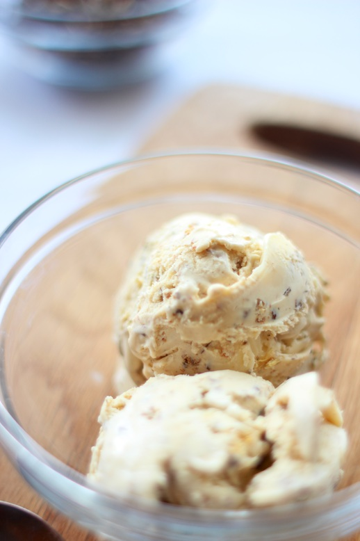 Caramelised Insect Ice Cream – Recipe